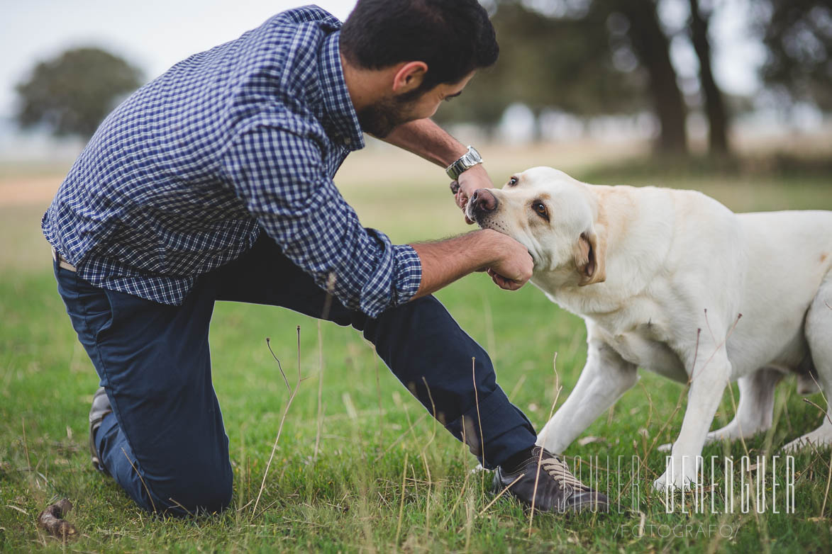 Fotos de Fotografos de Mascotas - 23