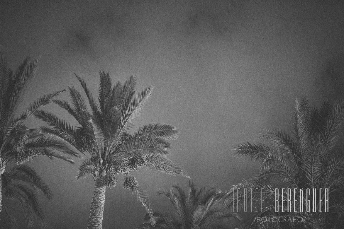 Fotos de Fotografos de Bodas Eventos 2.0 Murcia 6