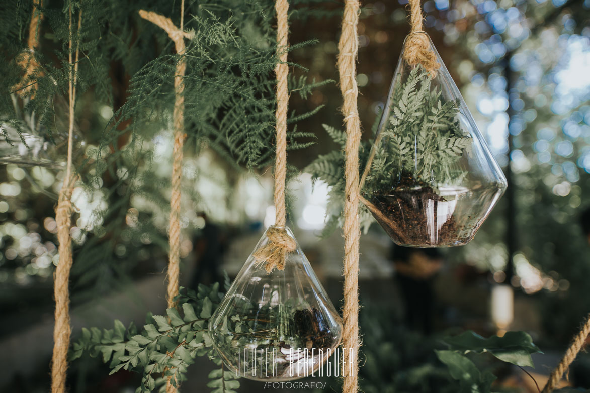 Decoración con cristal, cuerdas y plantas