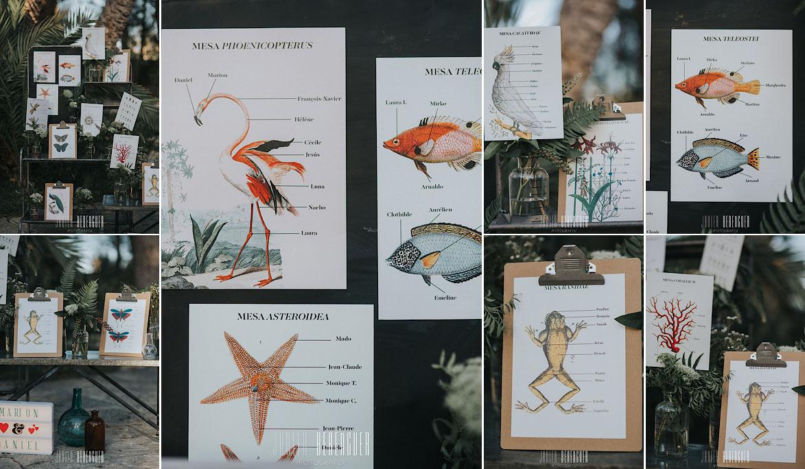seating plan con ilustraciones de animales