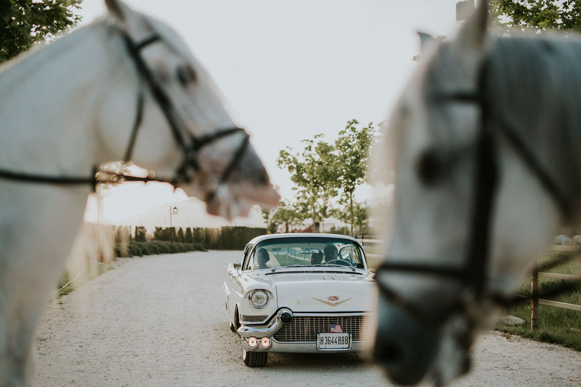 Fotógrafos de Boda Yeguada La Gloria Rebolledo Alicante