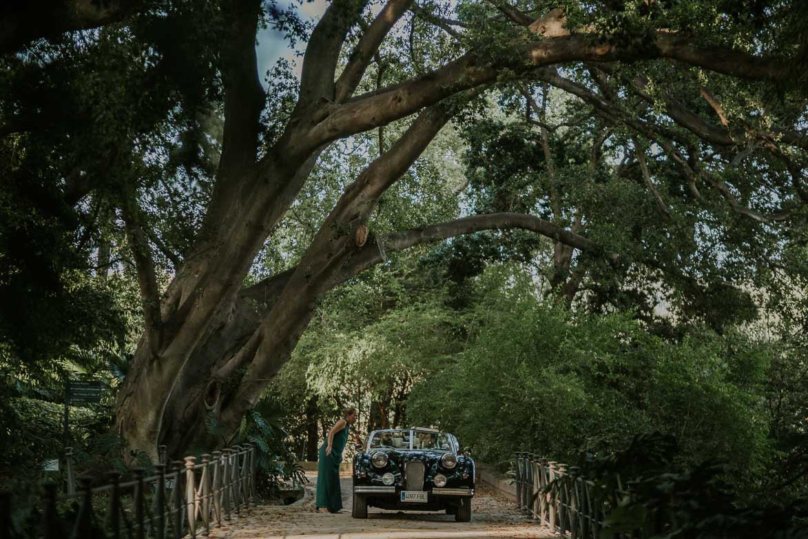 Fotografos bodas jard n bot nico la concepci n malaga for Jardin botanico de malaga