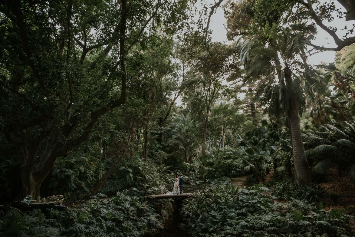 Fotos de Bodas en Jardín Botánico La Concepción Malaga