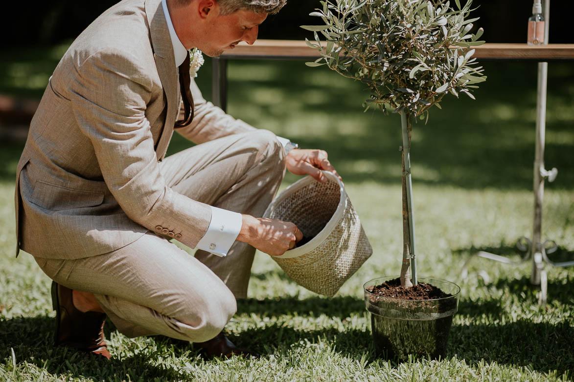 Plantar un Arbol Ceremonia de Boda