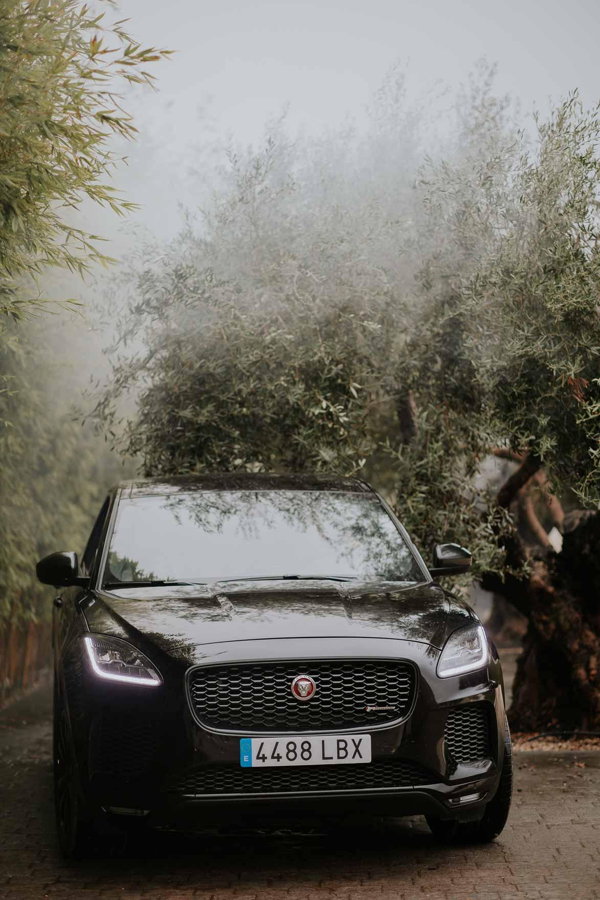 Jaguar para Bodas